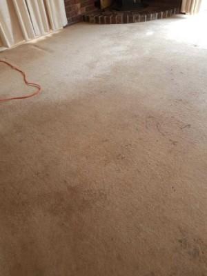 Ballarat Wool Carpet cleaning